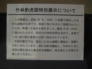 IMG_8019.JPG